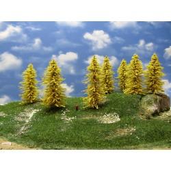 32M1TT-stromy,modříny 13-14m,12ks