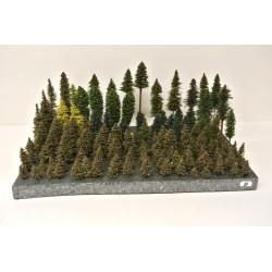 TT/N - Stromky,les, VÝPRODEJ,3-20cm,120ks (20)