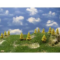 37M1TT-stromy,modříny 4-5m,30ks