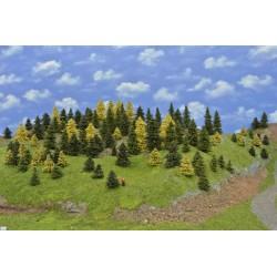 LES TT6 , smrky, borovice, modříny,3-11cm