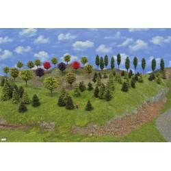 Sada TT9 ,borovice, modříny, listnaté, okrasné, 3-10cm