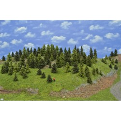 LES TT7 , smrky, borovice, modříny,3-11cm