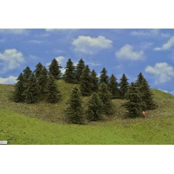 39B1TT-stromy,borovice,výška 8-10cm, 20ks