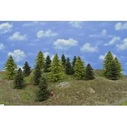 LES TT38 , borovice,modříny, 8-14 cm