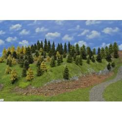 LES N6 ,smrky, borovice, modříny, 3-10cm