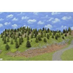 LES N8 ,smrky, borovice, modříny, 3-6cm