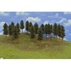 42B1HO-stromky,borovice,výška 15-17cm,20ks