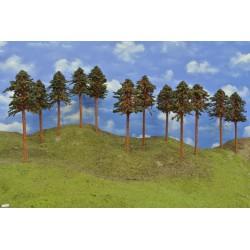 43B2HO-stromky,borovice,výška 18-20cm,12ks