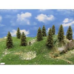 5S1HO-stromky,smrky,výška 5-8cm,30ks