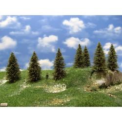 8S2HO-stromky,smrky,výška 7-10cm,20ks