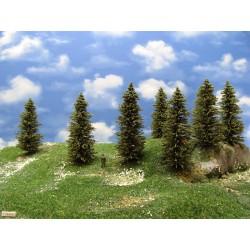 11S2HO-stromky,smrky,výška 10-12cm,16ks