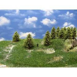 30MZ1HO-stromky,smrky,výška 6-9cm,20ks