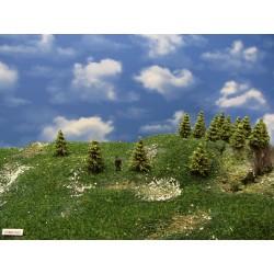 37MZ1HO-stromky,smrky,výška 3-5cm,30ks