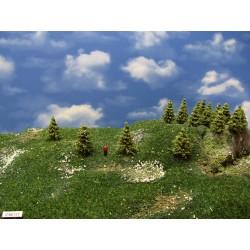 37MZ1TT- stromy,modříny zelené, 3-4cm,30ks