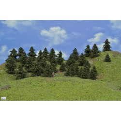LES N32, borovice, 3-6cm