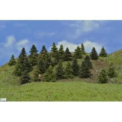 LES N33, smrky, borovice, 3-5cm