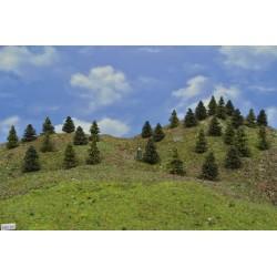 LES HO22, smrky, borovice, 3-5 cm,30ks