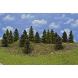 LES HO27, smrky, borovice, 9-12 cm,16ks