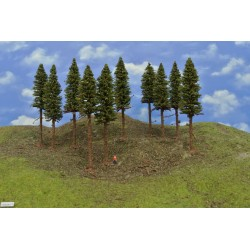10S2KTT-smrky s kořeny,výška 15-17cm,10ks