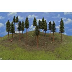 LES TT41 smrky,borovice s kořenem,14-20 cm