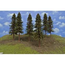 20S3KHO-smrky s kořeny,výška 23-26cm,6ks
