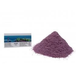 HO,TT,N Posyp světle fialový,šeřík,250ml (P22/05)
