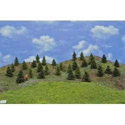 LES TT21 smrky, borovice, 3-5 cm,30ks