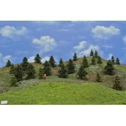 LES TT22 smrky, borovice, 4-6 cm,25ks
