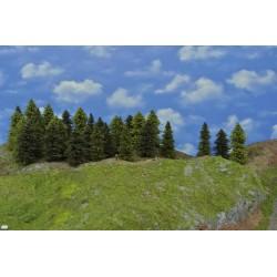LES N19, smrky, borovice, modříny 3-13cm,45ks